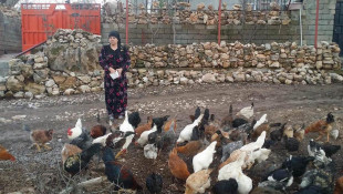 Vivan Khoshbaya uses her small poultry farming project to help the needy