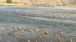 بەوێنە: كەمبوونەوەی ئاوی زێی بچووك لە سنووری كەركوك