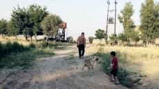 ISIS at night and Coronavirus at day-time: Kaka'i village not allowed a respite