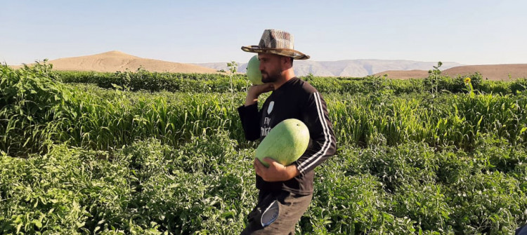 Şengalli çiftçiler, kontrol noktalarından şikayetçi!