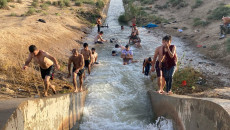 """Dakukluların, yüksek sıcaklıklardan kaçış yeri """"sulama projeleri"""""""