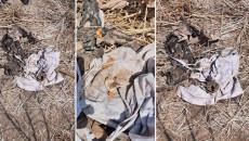 العثور على مقبرة جماعية في حديقة منزل بإحدى نواحي سنجار