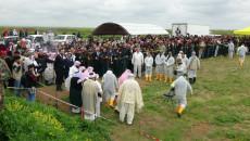 توقف العمل في مقابر سنجار الجماعية