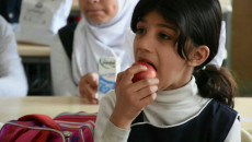 School meals program to be launched in Ninewa starting from this November