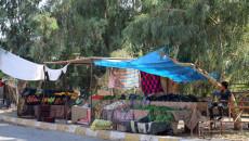 Raşad bölgesinde bir muhtar öldürüldü