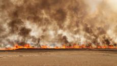 حرائق حقول الحنطة تقتل مزارعين اثنين