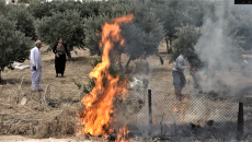 15-year-old girl dies in fire accident in Shingal