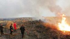 Ninewa: Death toll from crop fire-related incidents risen to 7