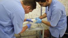 اول عيادة تخصصية لعلاج الحيوانات  في الموصل