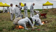 Sincar'ın Koco köyündeki Ezidi mağdurlarının ilk toplu mezarı ortaya çıkarıldı
