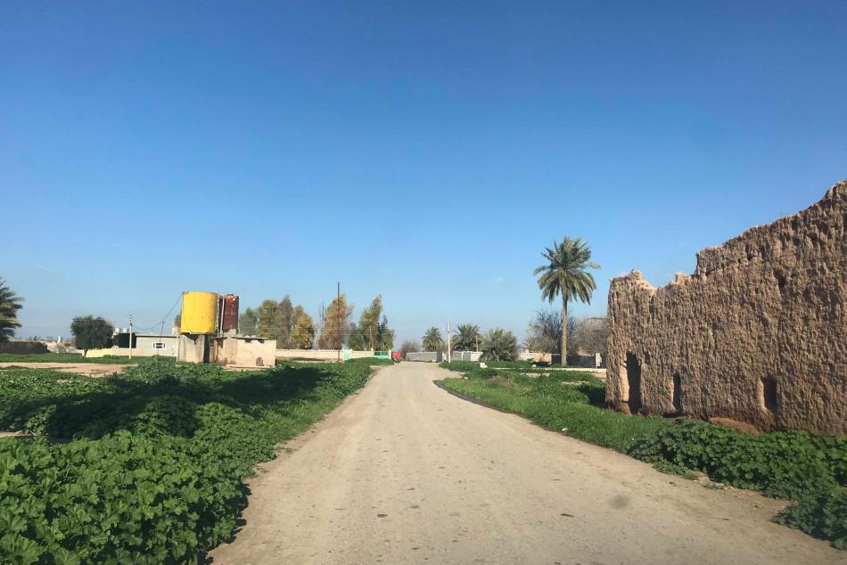 Kerkük'teki tarımsal arazi mülkiyeti anlaşmazlıkları Irak parlamentosuna yükseltilecek